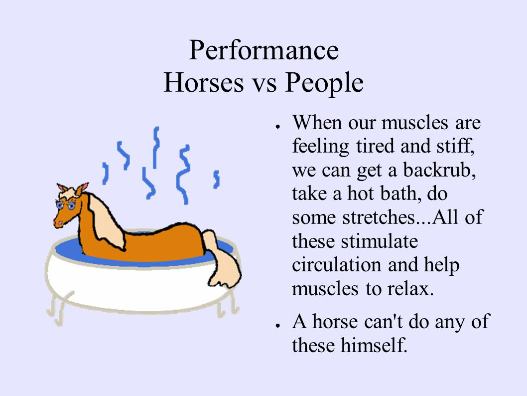 Performance Horses vs People ● When our muscles are feeling tired and stiff, we can get a backrub, take a hot bath, do some stretches...All of these stimulate circulation and help muscles to relax.