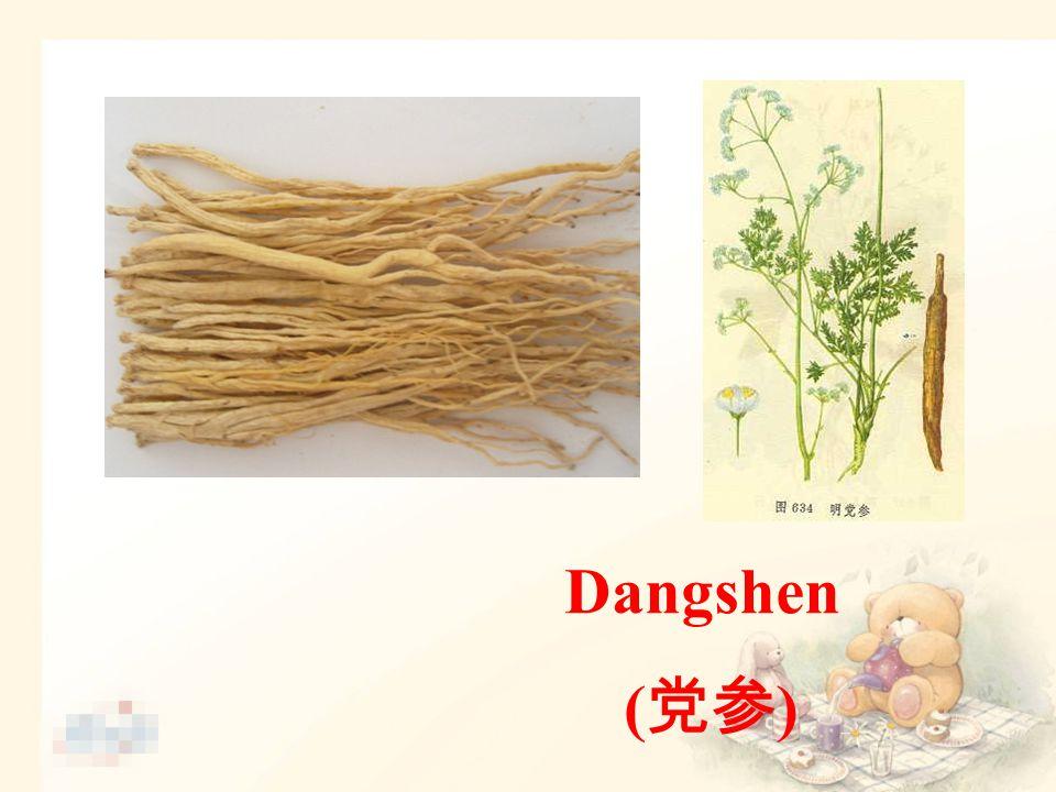 Dangshen ( 党参 )