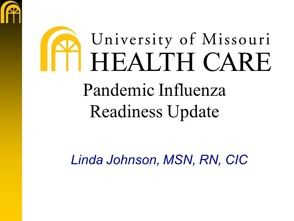 Pandemic Influenza Readiness Update Linda Johnson, MSN, RN, CIC