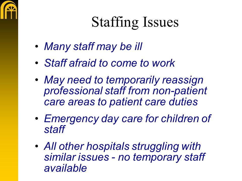 Staffing Issues Many staff may be ill Staff afraid to come to work May need to temporarily reassign professional staff from non-patient care areas to patient care duties Emergency day care for children of staff All other hospitals struggling with similar issues - no temporary staff available