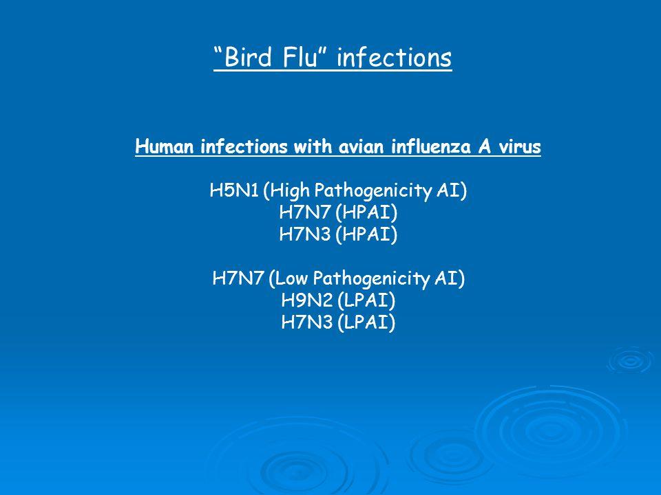 Bird Flu infections Human infections with avian influenza A virus H5N1 (High Pathogenicity AI) H7N7 (HPAI) H7N3 (HPAI) H7N7 (Low Pathogenicity AI) H9N2 (LPAI) H7N3 (LPAI)