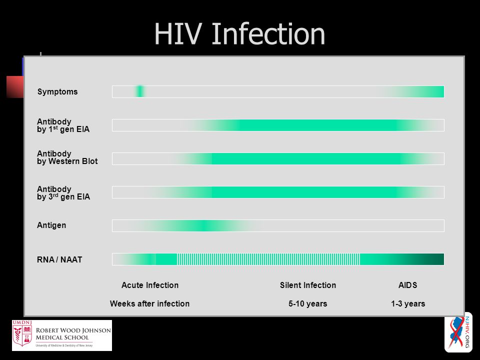 HIV Infection AIDSAcute InfectionSilent Infection 1-3 yearsWeeks after infection5-10 years Symptoms Antibody by 3 rd gen EIA Antigen Antibody by Western Blot Antibody by 1 st gen EIA RNA / NAAT