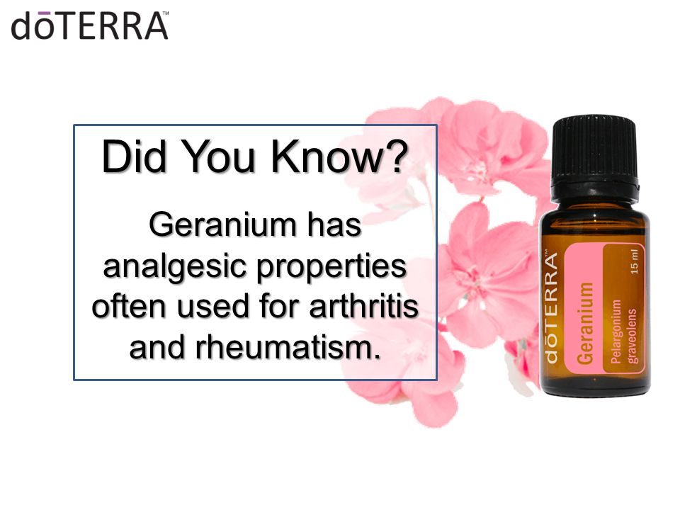 Did You Know? Geranium has analgesic properties often used for arthritis and rheumatism.