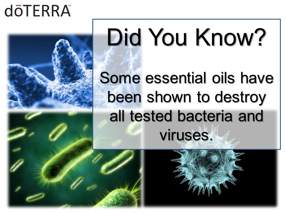 Did You Know? Some essential oils have been shown to destroy all tested bacteria and viruses.