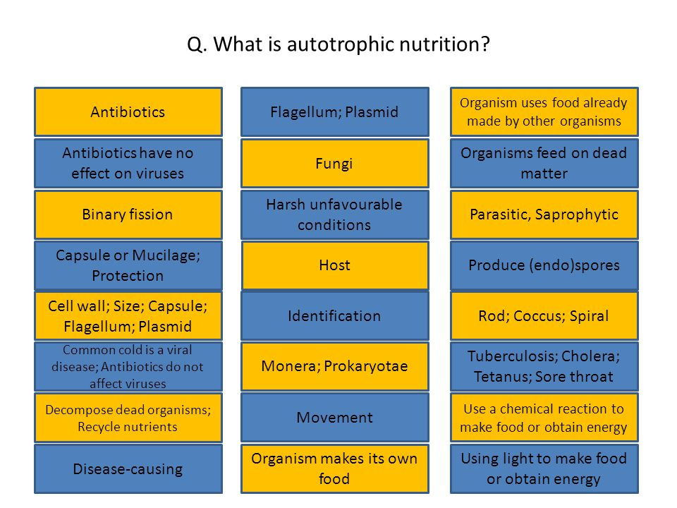 Q. What is autotrophic nutrition.
