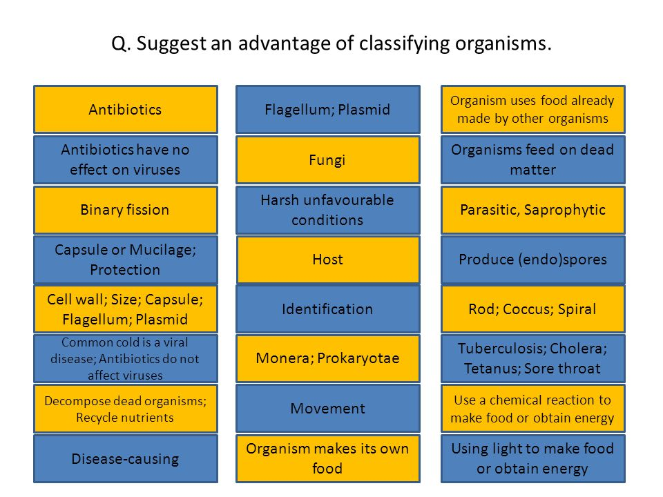 Q. Suggest an advantage of classifying organisms.