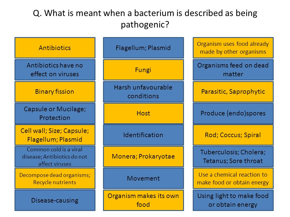 Q. What is meant when a bacterium is described as being pathogenic.