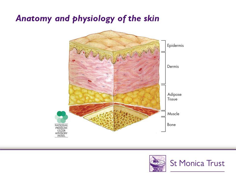 Risk factors ExternalInternal PressureAge FrictionChronic disease ShearingReduced mobility MoistureIncontinence Malnutrition Sensory impairment Skin temperature