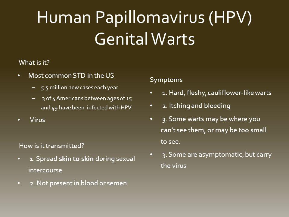 Human Papillomavirus (HPV) Genital Warts What is it.