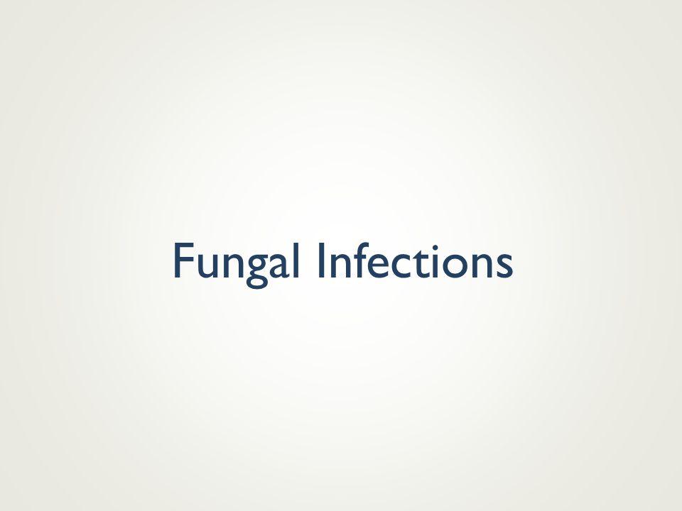 Streptococcus pyogenes Necrotising fasciitis
