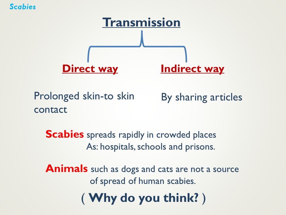 Transmission Direct way Prolonged skin-to skin contact Indirect way By sharing articles Scabies spreads rapidly in crowded places As: hospitals, schoo