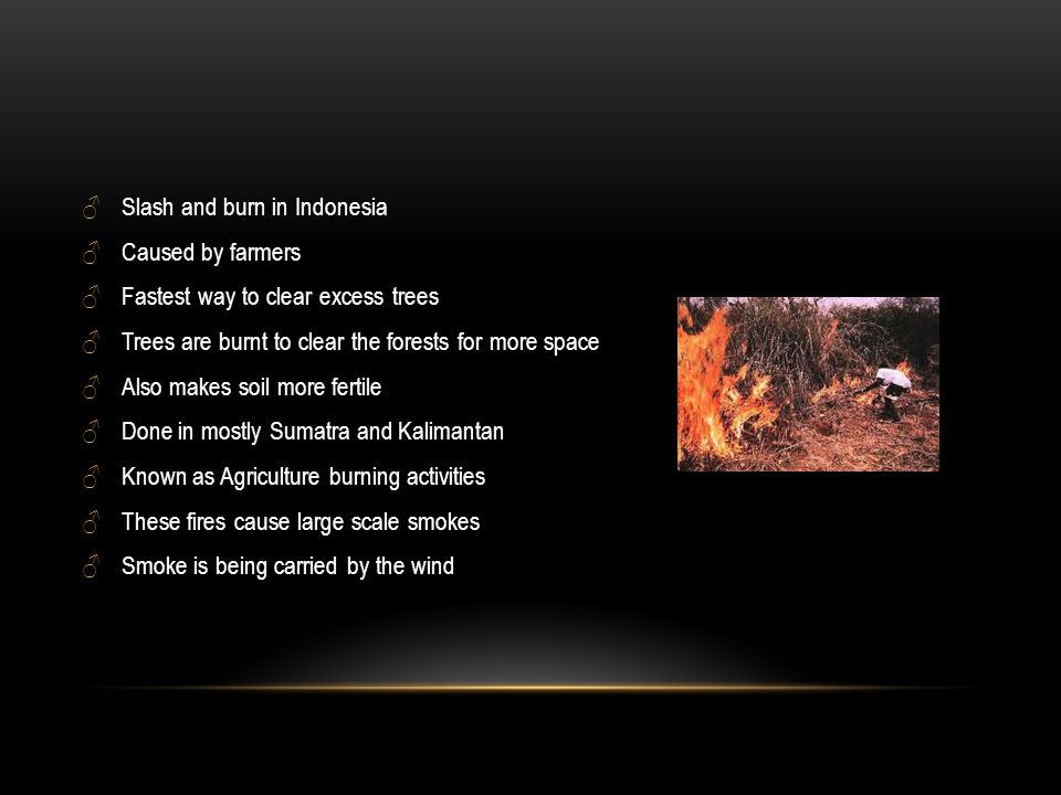 ♂Slash and burn in Indonesia ♂Caused by farmers ♂Fastest way to clear excess trees ♂Trees are burnt to clear the forests for more space ♂Also makes soil more fertile ♂Done in mostly Sumatra and Kalimantan ♂Known as Agriculture burning activities ♂These fires cause large scale smokes ♂Smoke is being carried by the wind