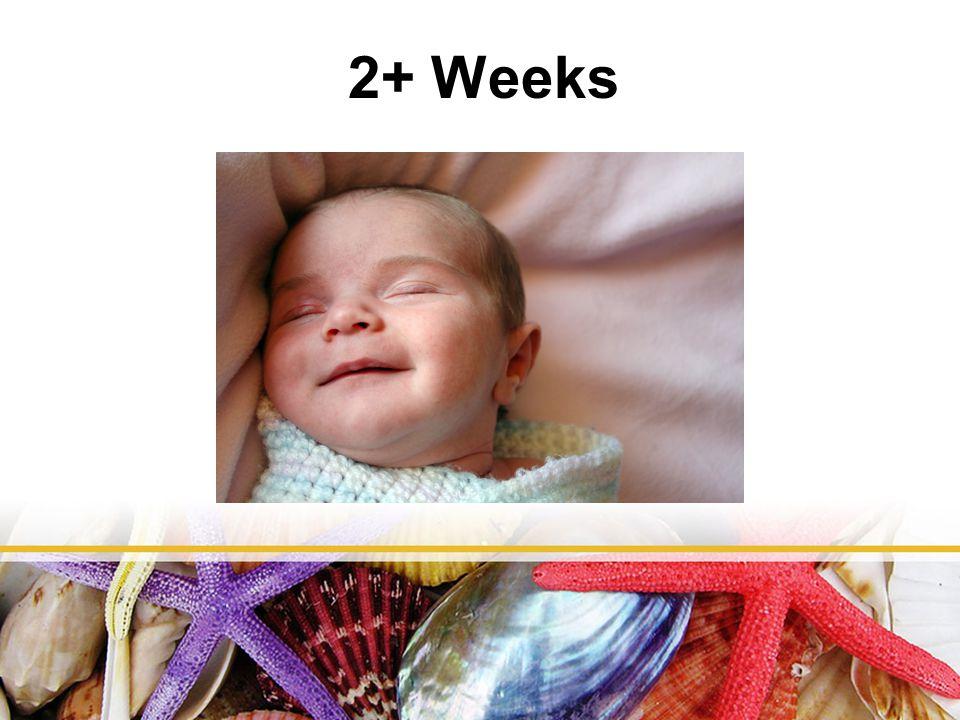 2+ Weeks