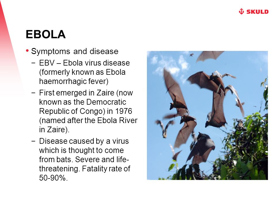 EBOLA Symptoms and disease −EBV – Ebola virus disease (formerly known as Ebola haemorrhagic fever) −First emerged in Zaire (now known as the Democratic Republic of Congo) in 1976 (named after the Ebola River in Zaire).
