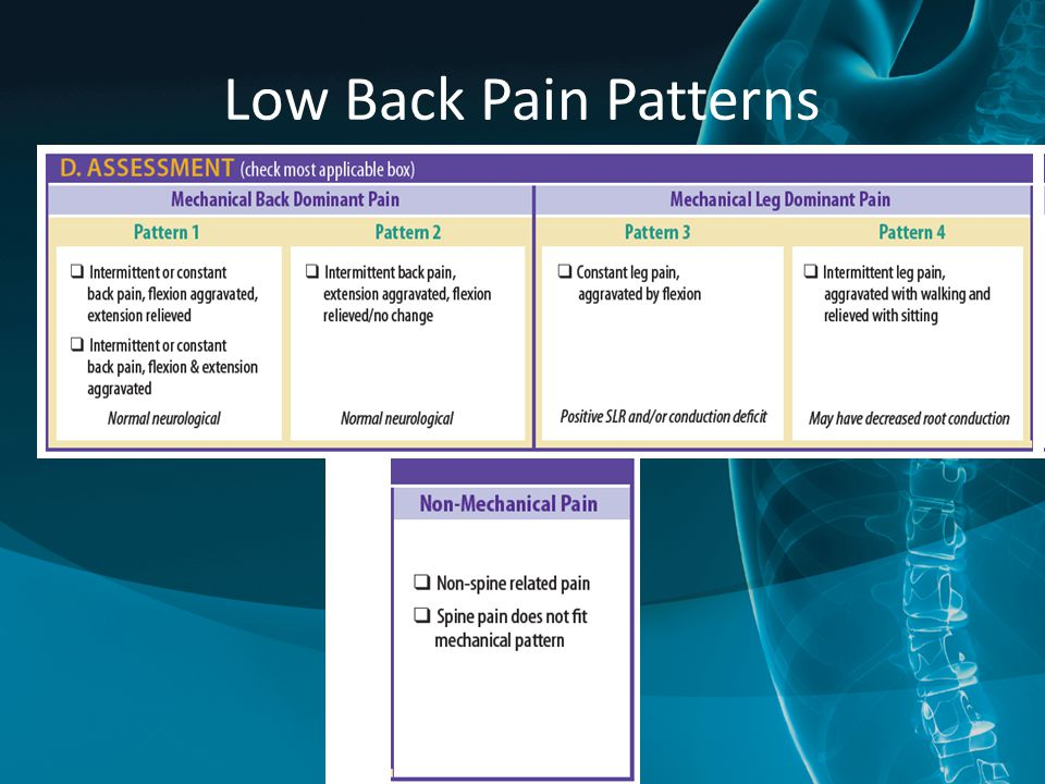 Low Back Pain Patterns