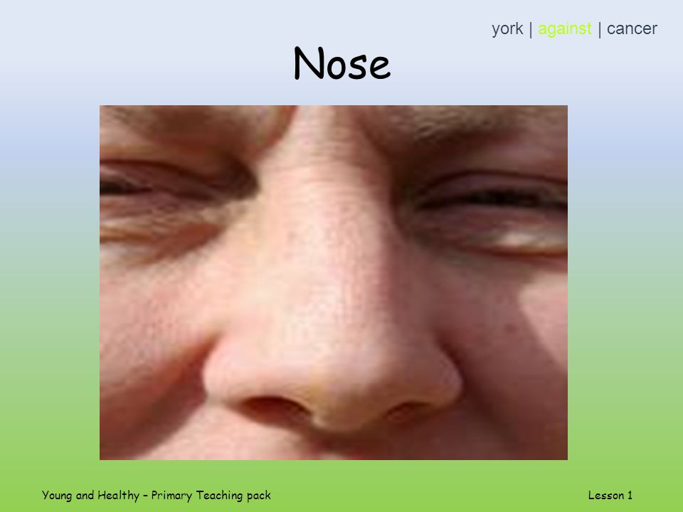Nose york | against | cancer Young and Healthy – Primary Teaching pack Lesson 1