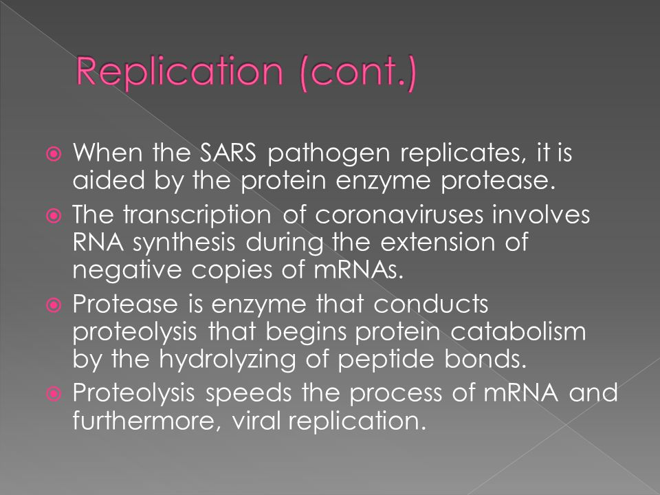  When the SARS pathogen replicates, it is aided by the protein enzyme protease.