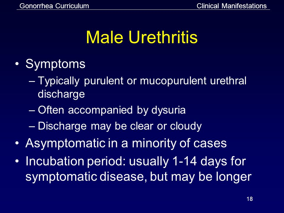 Gonorrhea Curriculum 18 Male Urethritis Symptoms –Typically purulent or mucopurulent urethral discharge –Often accompanied by dysuria –Discharge may be clear or cloudy Asymptomatic in a minority of cases Incubation period: usually 1-14 days for symptomatic disease, but may be longer Clinical Manifestations