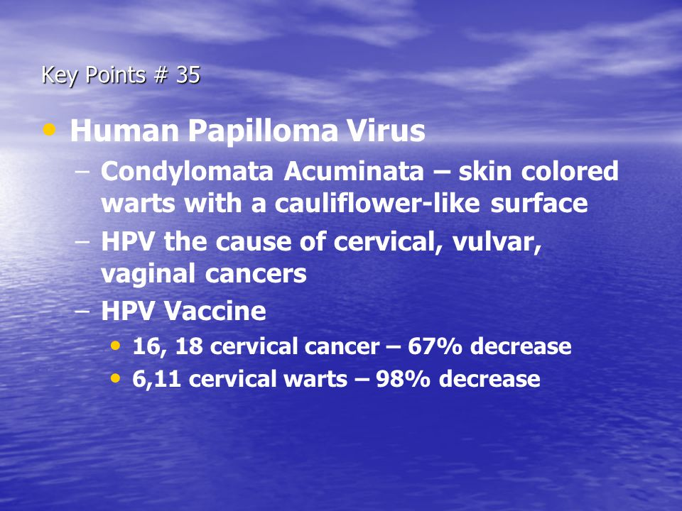 Key Points # 35 Human Papilloma Virus – –Condylomata Acuminata – skin colored warts with a cauliflower-like surface – –HPV the cause of cervical, vulv