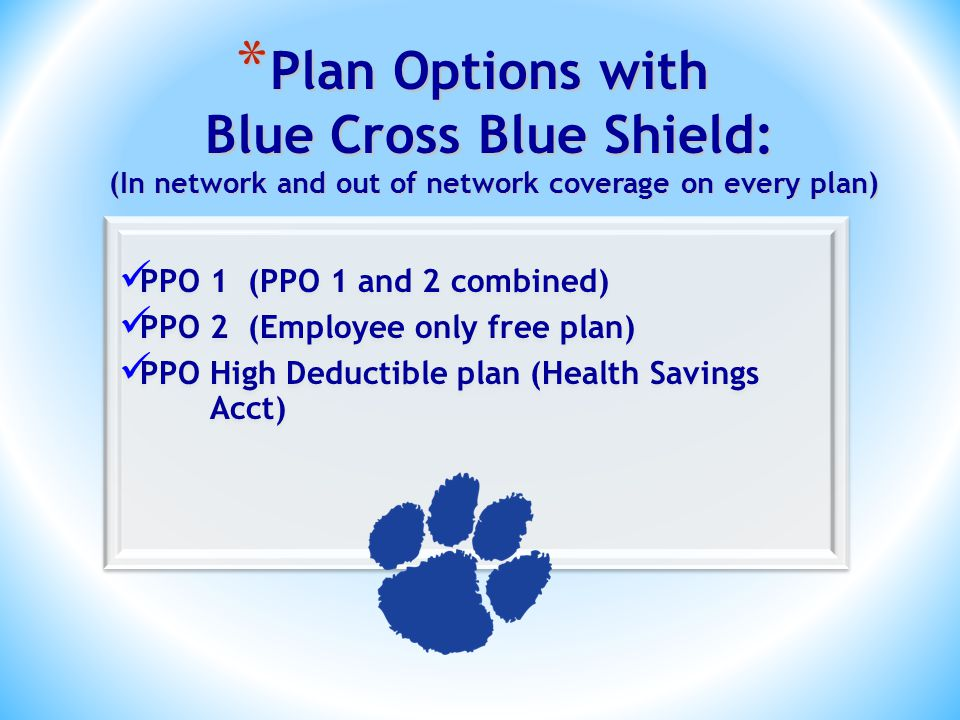 * Plan Options with Blue Cross Blue Shield: (In network and out of network coverage on every plan) PPO 1 (PPO 1 and 2 combined) PPO 2 (Employee only free plan) PPO High Deductible plan (Health Savings Acct) PPO 1 (PPO 1 and 2 combined) PPO 2 (Employee only free plan) PPO High Deductible plan (Health Savings Acct)
