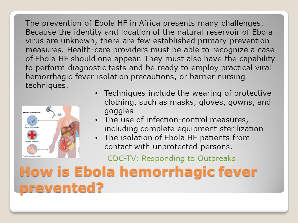 How is Ebola hemorrhagic fever prevented.