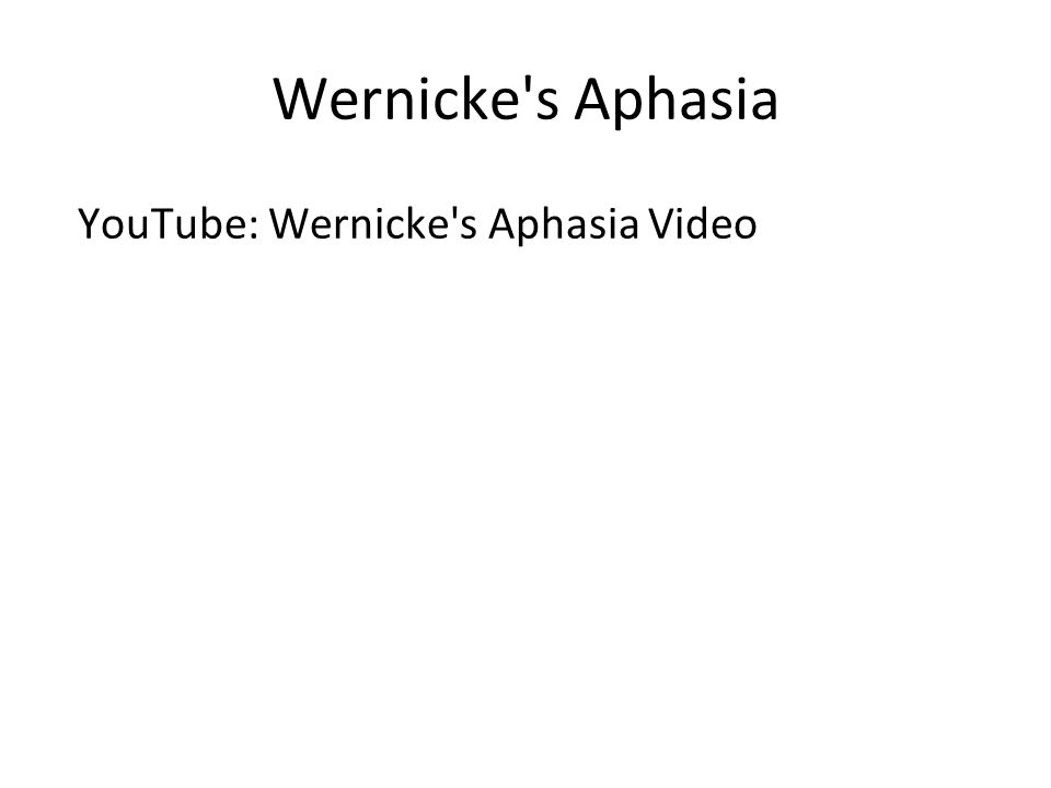 Wernicke s Aphasia YouTube: Wernicke s Aphasia Video