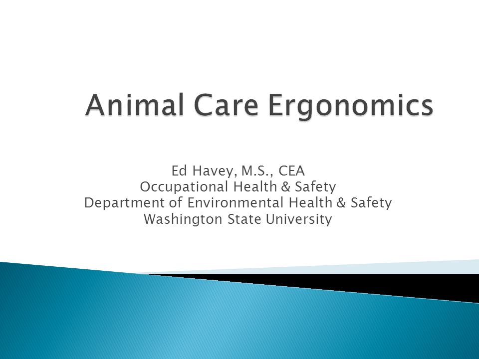 Ed Havey, M.S., CEA Occupational Health & Safety Department of Environmental Health & Safety Washington State University