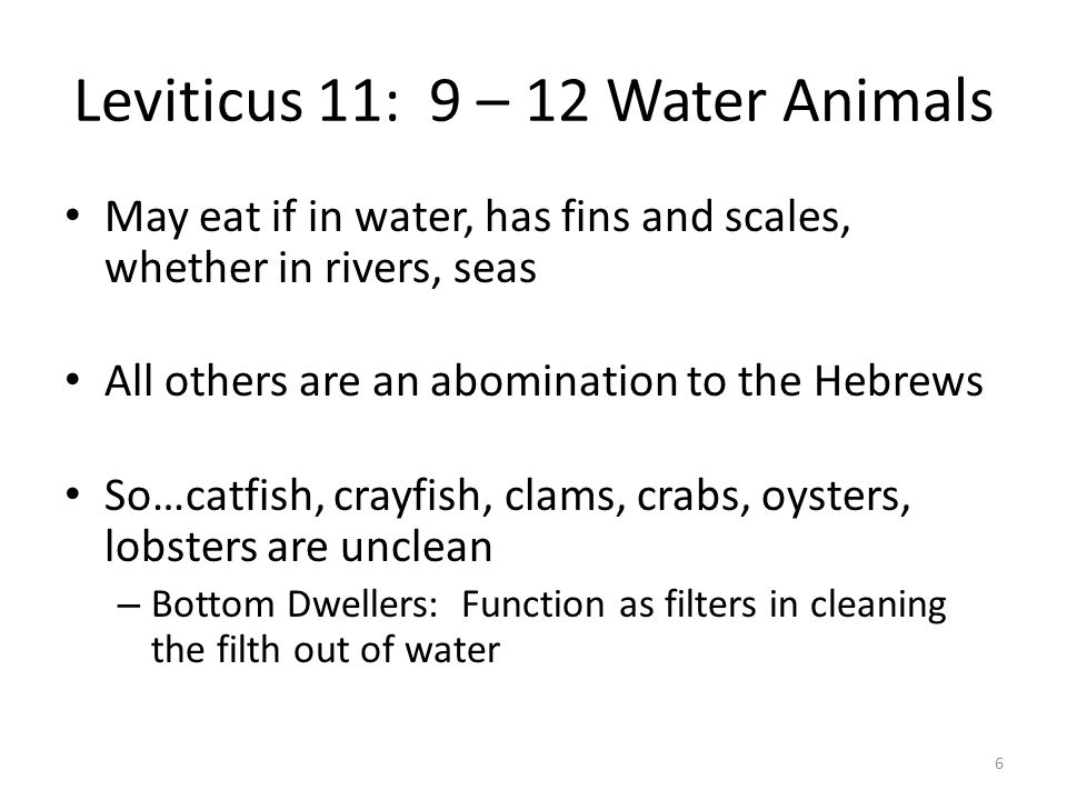 Leviticus 11: 9 – 12 Water Animals May eat if in water, has fins and scales, whether in rivers, seas All others are an abomination to the Hebrews So…c