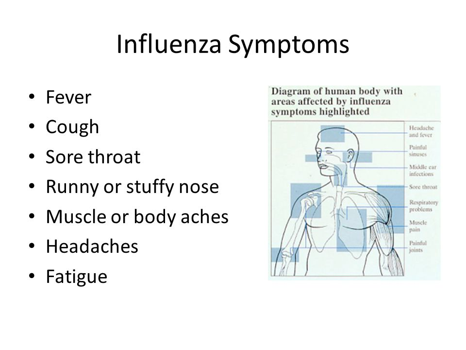 Influenza Symptoms Fever Cough Sore throat Runny or stuffy nose Muscle or body aches Headaches Fatigue