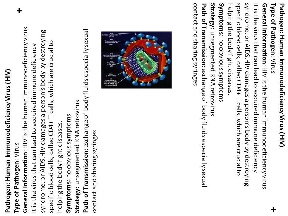 ✚ ✚ Pathogen: Human Immunodeficiency Virus (HIV) Type of Pathogen: Virus General Information: HIV is the human immunodeficiency virus.