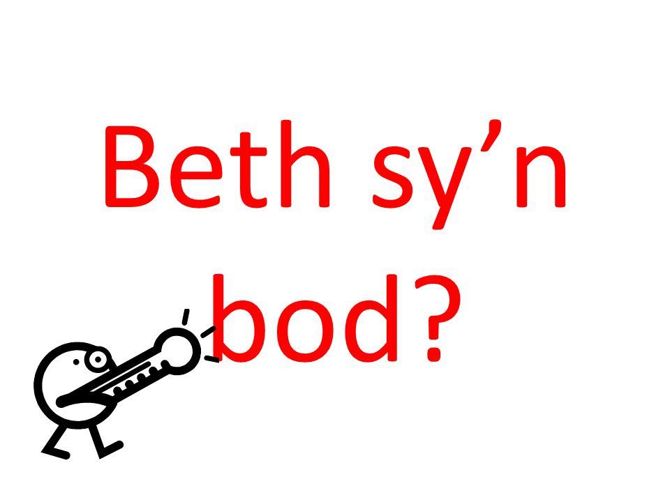 Beth sy'n bod?