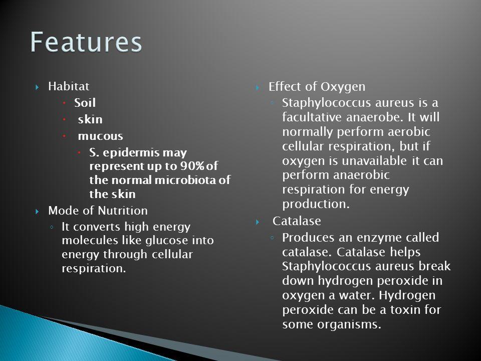  Habitat  Soil  skin  mucous  S.