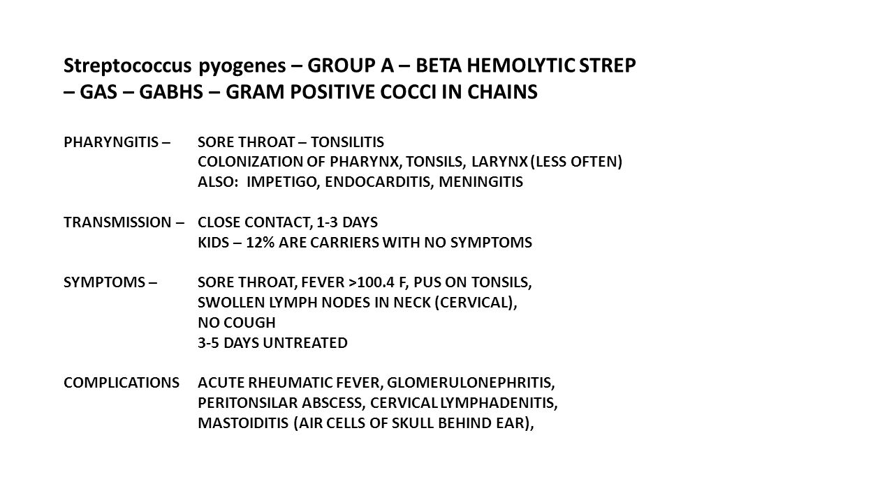 Streptococcus pyogenes – GROUP A – BETA HEMOLYTIC STREP – GAS – GABHS – GRAM POSITIVE COCCI IN CHAINS PHARYNGITIS – SORE THROAT – TONSILITIS COLONIZAT