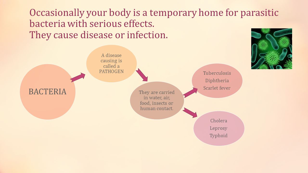 Occasionally your body is a temporary home for parasitic bacteria with serious effects.