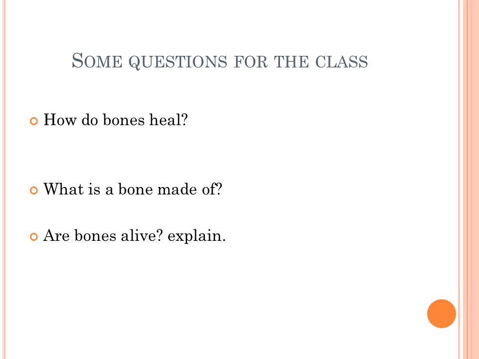 S OME QUESTIONS FOR THE CLASS How do bones heal? What is a bone made of? Are bones alive? explain.