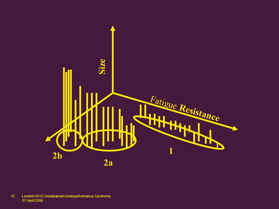 London 2012:Unexplained Underperformance Syndrome 07 April 2008 12 Size Fatigue Resistance 2b 2a 1