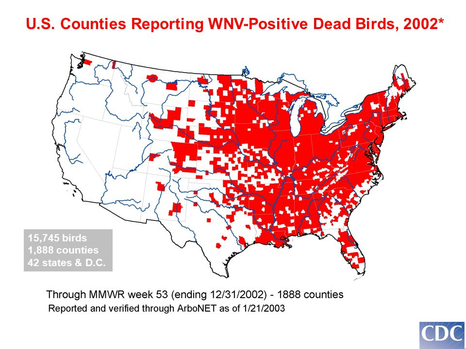 U.S. Counties Reporting WNV-Positive Dead Birds, 2002* 15,745 birds 1,888 counties 42 states & D.C.