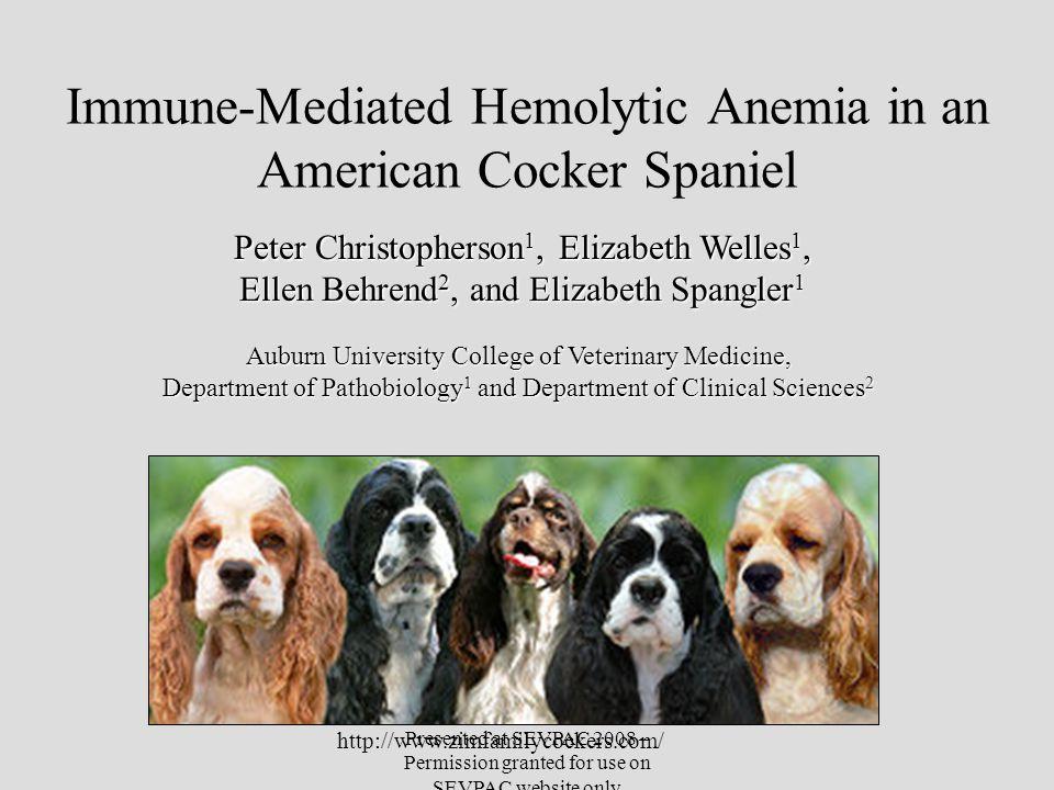Immune-Mediated Hemolytic Anemia in an American Cocker Spaniel Peter Christopherson 1, Elizabeth Welles 1, Ellen Behrend 2, and Elizabeth Spangler 1 A