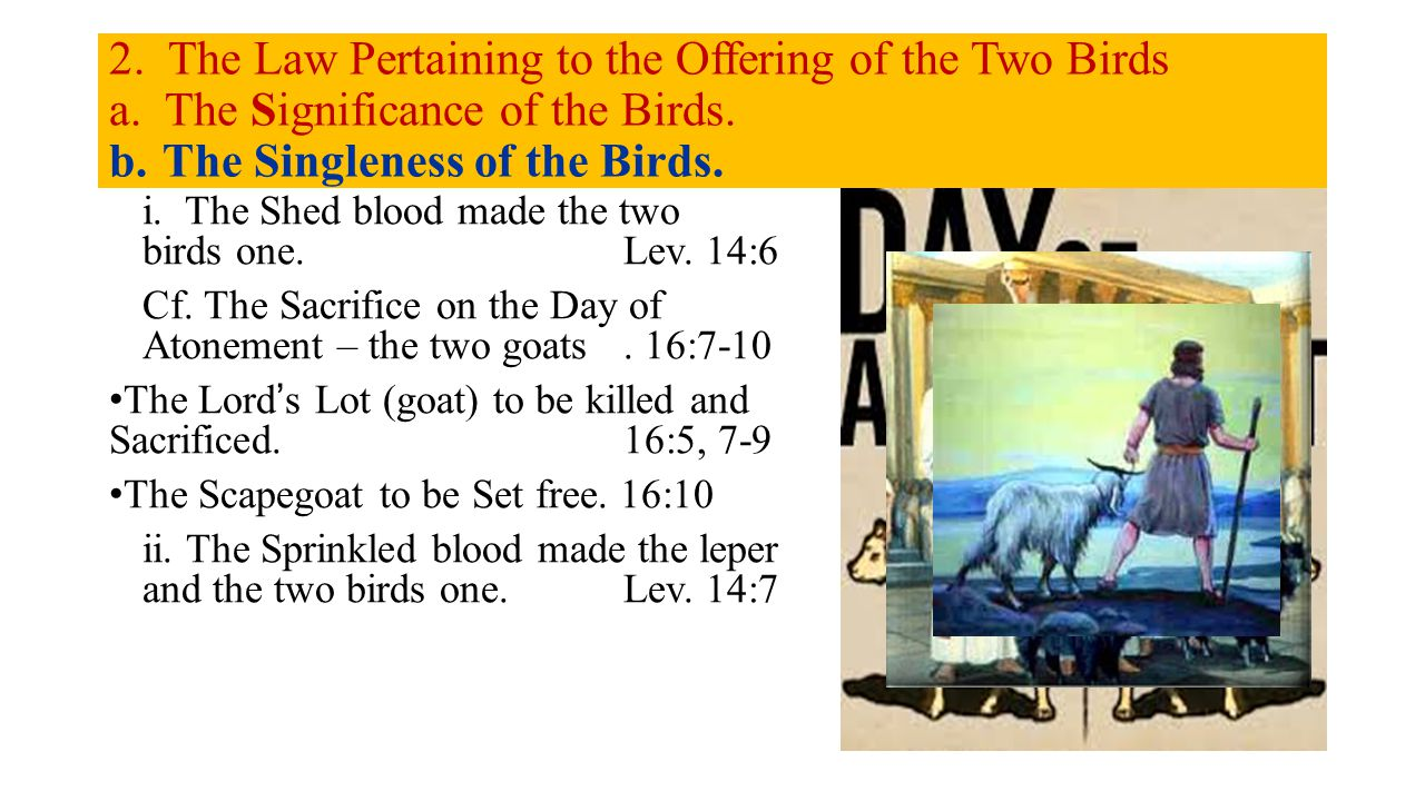 2. The Law Pertaining to the Offering of the Two Birds a.