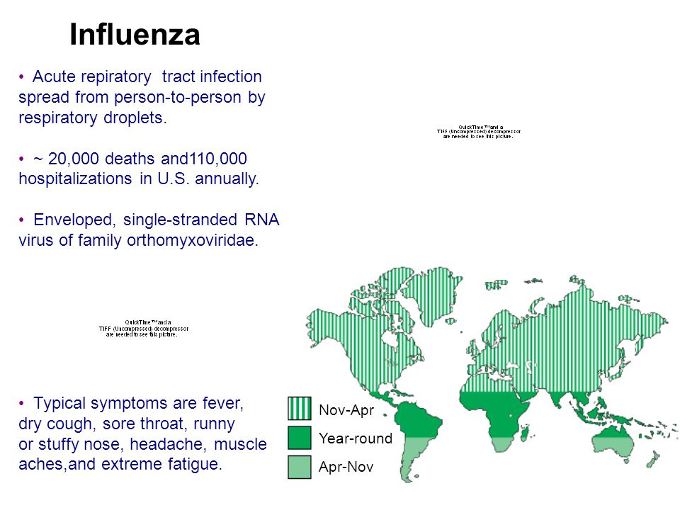Nov-Apr Year-round Apr-Nov 1917 PANDEMIC Influenza Acute repiratory tract infection spread from person-to-person by respiratory droplets. ~ 20,000 dea