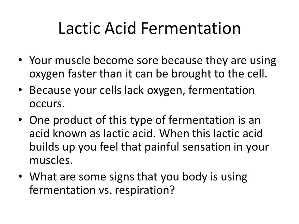 Lactic Acid Fermentation Your muscle become sore because they are using oxygen faster than it can be brought to the cell. Because your cells lack oxyg