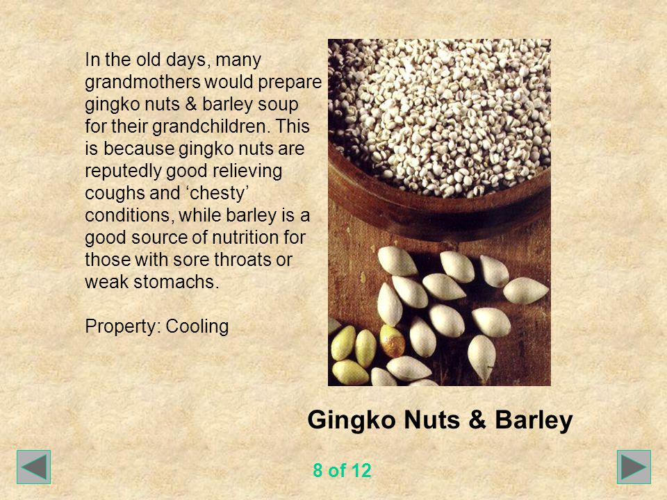 Gingko Nuts & Barley In the old days, many grandmothers would prepare gingko nuts & barley soup for their grandchildren.