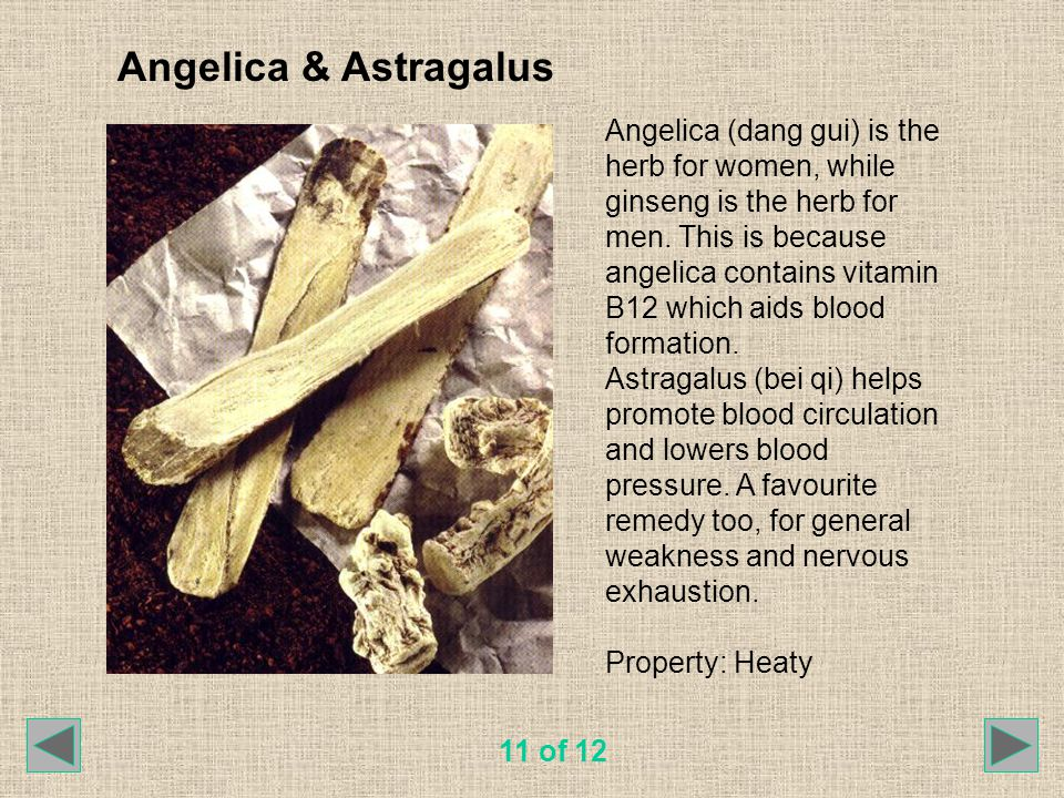 Angelica & Astragalus Angelica (dang gui) is the herb for women, while ginseng is the herb for men. This is because angelica contains vitamin B12 whic