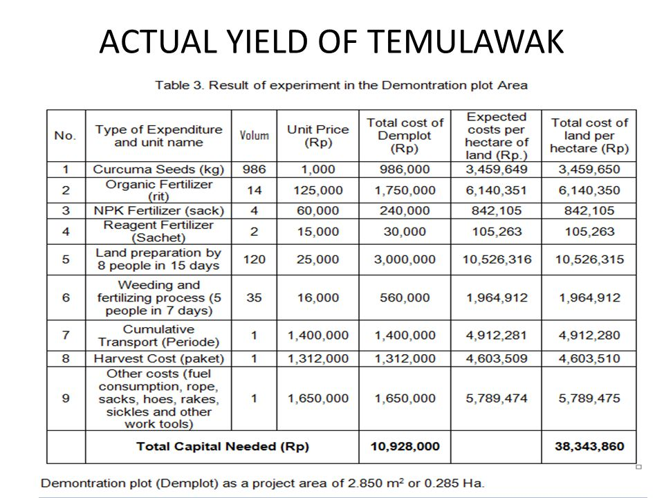 ACTUAL YIELD OF TEMULAWAK