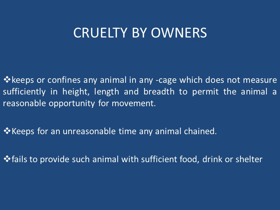  keeps or confines any animal in any -cage which does not measure sufficiently in height, length and breadth to permit the animal a reasonable opportunity for movement.