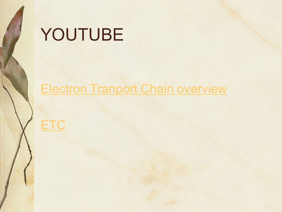 Electron Transport Chain http://biosciencesarchive.uga.edu/1996/spring_96/bio_104/notes/may_29.html