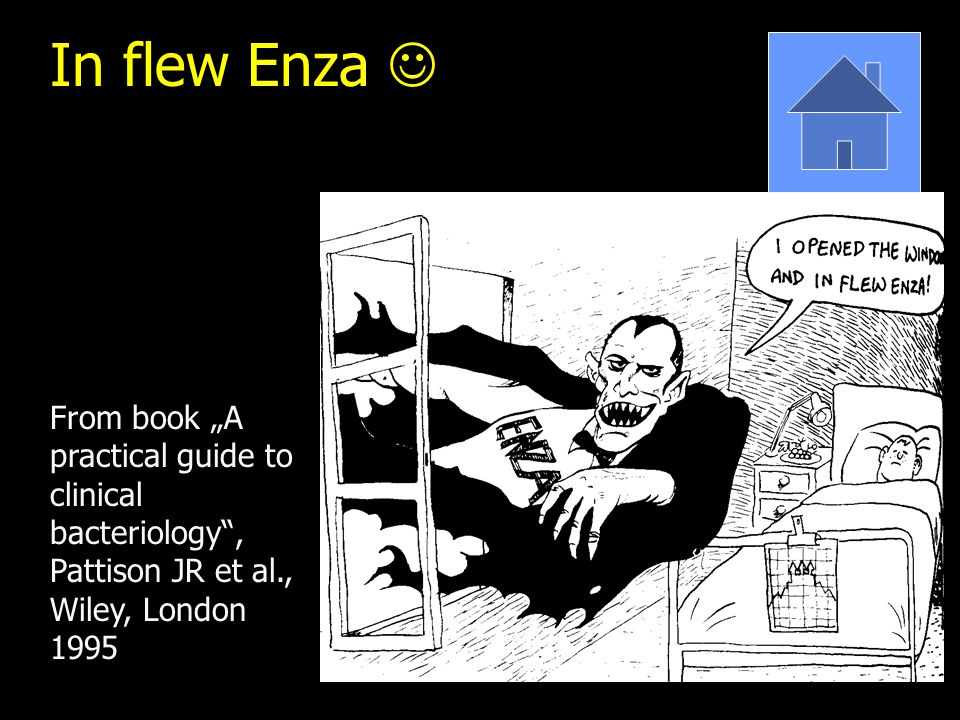 "In flew Enza From book ""A practical guide to clinical bacteriology , Pattison JR et al., Wiley, London 1995"