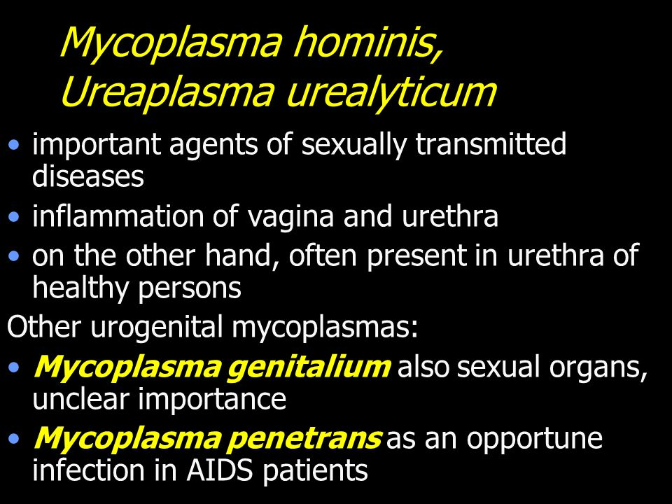 Mycoplasma hominis, Ureaplasma urealyticum important agents of sexually transmitted diseases inflammation of vagina and urethra on the other hand, often present in urethra of healthy persons Other urogenital mycoplasmas: Mycoplasma genitalium also sexual organs, unclear importance Mycoplasma penetrans as an opportune infection in AIDS patients