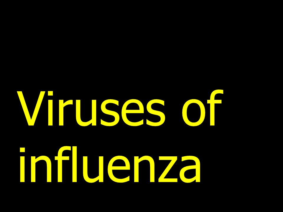 Viruses of influenza