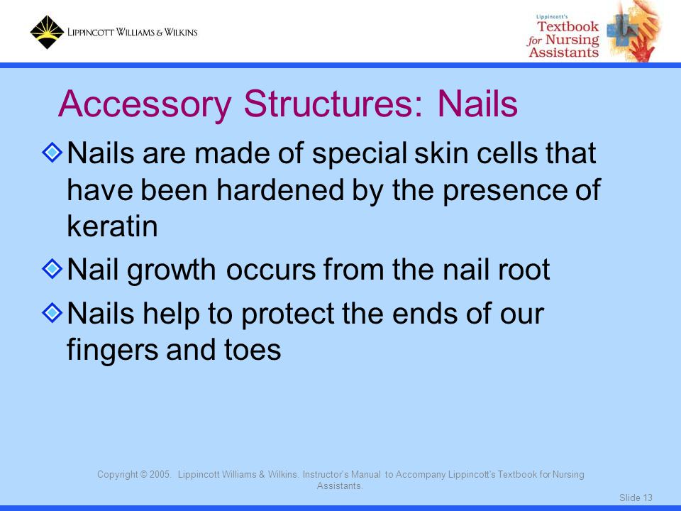 Slide 13 Copyright © 2005. Lippincott Williams & Wilkins. Instructor's Manual to Accompany Lippincott's Textbook for Nursing Assistants. Nails are mad